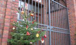 Weihnachten in der Kita Kinderburg