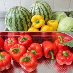Frisches Gemüse